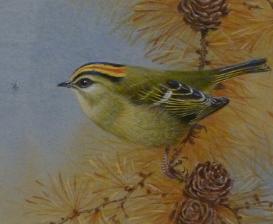 Watercolour by David Ord Kerr. Westcliffe Gallery, Sheringham