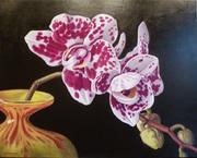 Oil by Dianne Branscombe, westcliffe Gallery Sheringham